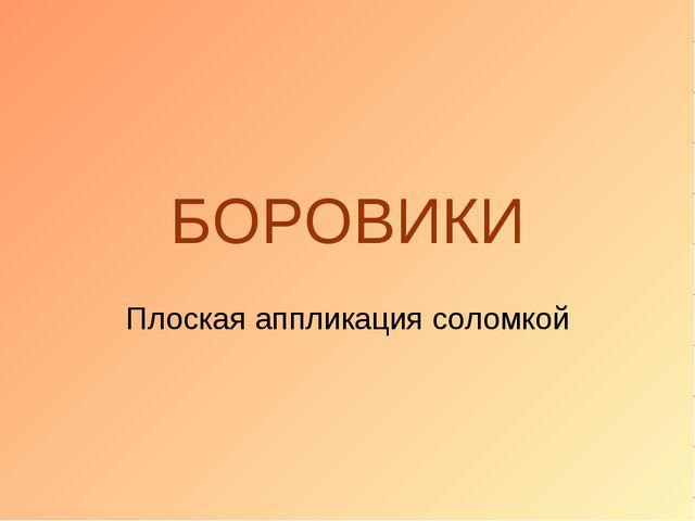БОРОВИКИ Плоская аппликация соломкой