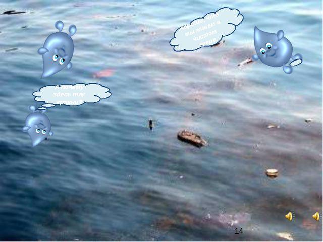 А почему здесь так грязно? Хорошо, что мы живем в чистом озере. *