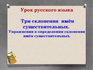 Урок русского языка Три склонения имён существительных. Упражнения в определе