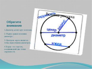 Обратите внимание 1.Диаметр делит круг пополам; 2. Радиус равен половине диам