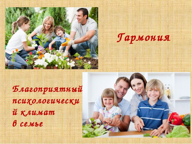 Гармония Благоприятный психологический климат в семье