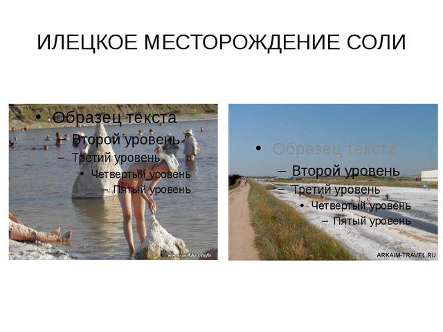 ИЛЕЦКОЕ МЕСТОРОЖДЕНИЕ СОЛИ Илецкое месторождение