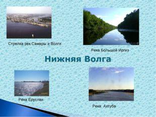 Стрелка рек Самары и Волги Река Большой Иргиз Река Еруслан Река Ахтуба