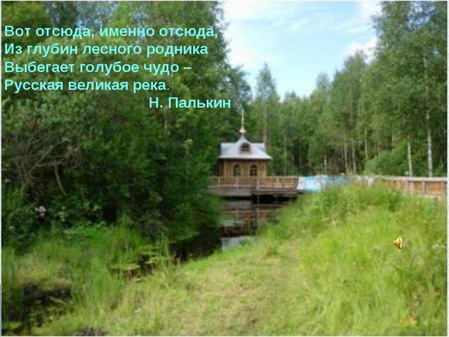 Вот отсюда, именно отсюда, Из глубин лесного родника Выбегает голубое чудо –...