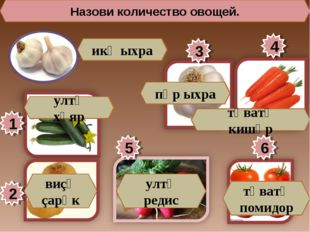 Назови количество овощей. 1 5 3 4 2 6 икӗ ыхра ултӑ хӑяр виçӗ çарӑк пӗр ыхра