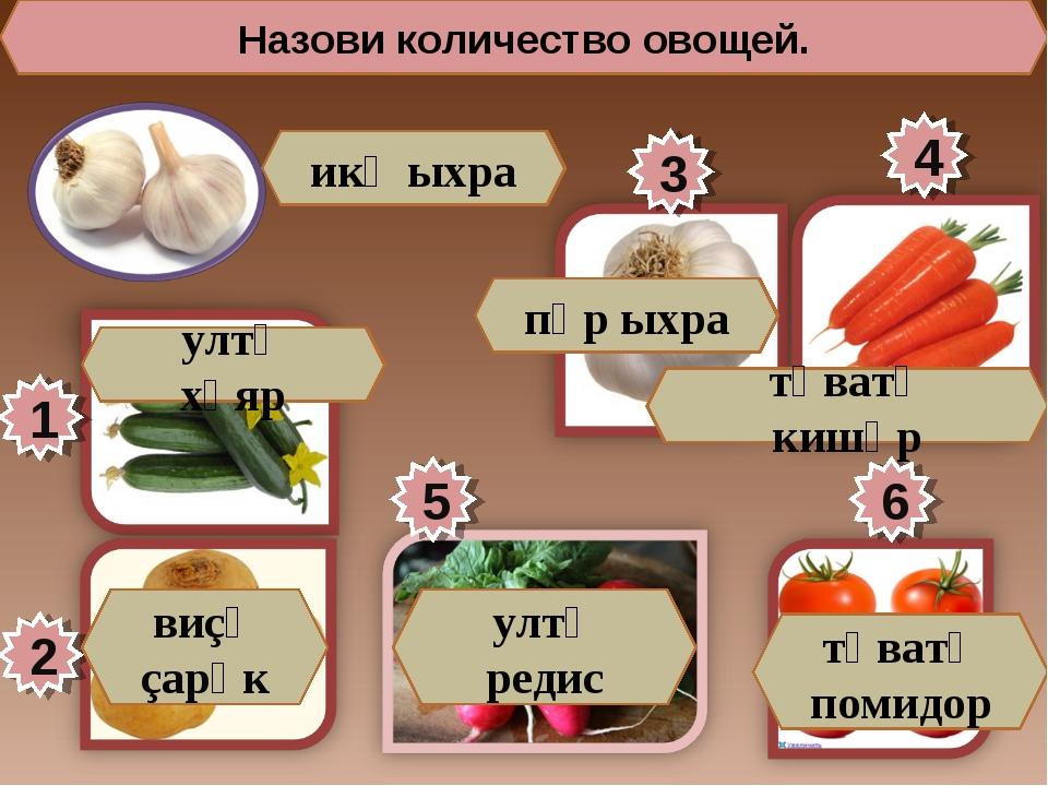 Назови количество овощей. 1 5 3 4 2 6 икӗ ыхра ултӑ хӑяр виçӗ çарӑк пӗр ыхра...