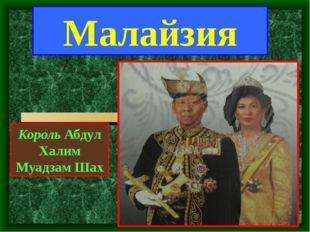 Король Абдул Халим Муадзам Шах Малайзия