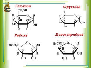 Глюкоза Фруктоза Рибоза Дезоксирибоза