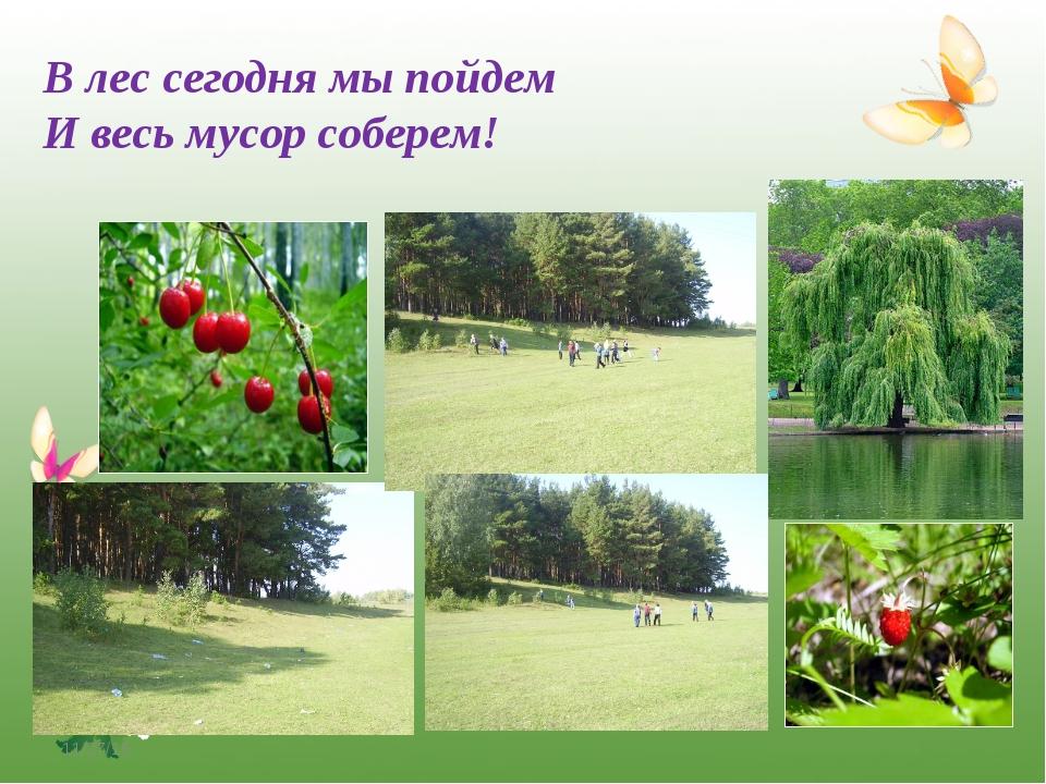 * В лес сегодня мы пойдем И весь мусор соберем! http://www.o-detstve.ru/ Порт...