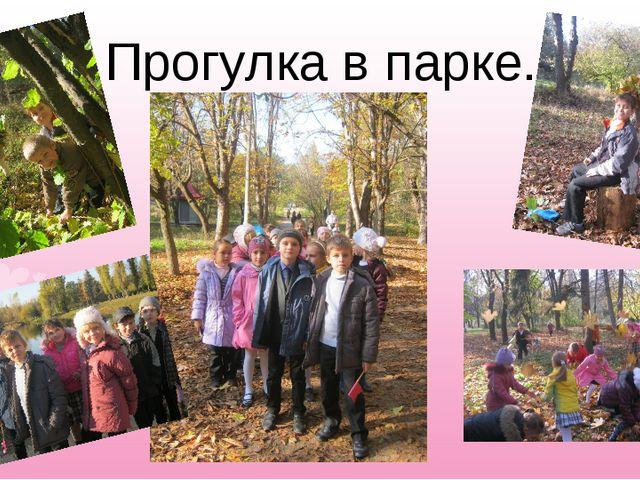 Прогулка в парке.