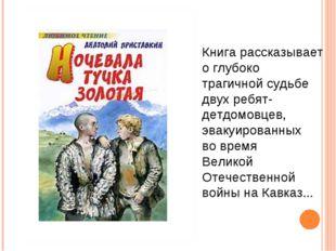 Книга рассказывает о глубоко трагичной судьбе двух ребят-детдомовцев, эвакуир