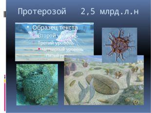 Протерозой 2,5 млрд.л.н