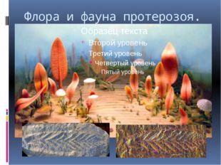Флора и фауна протерозоя.