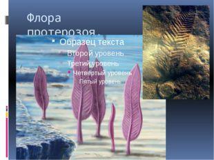 Флора протерозоя.