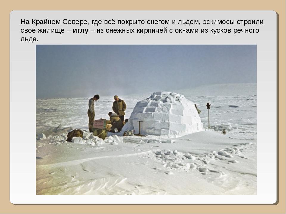 На Крайнем Севере, где всё покрыто снегом и льдом, эскимосы строили своё жили...