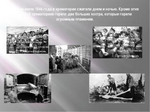 В июне-июле 1944 года в крематории сжигали днем и ночью. Кроме огня из труб к