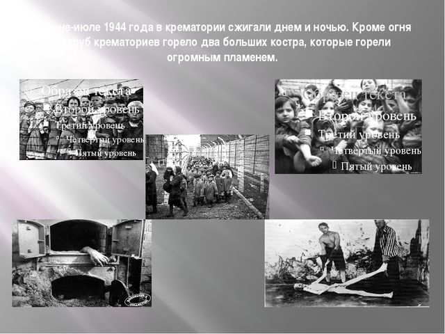 В июне-июле 1944 года в крематории сжигали днем и ночью. Кроме огня из труб к...