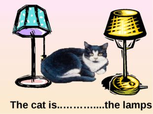 between The cat is..………....the lamps.