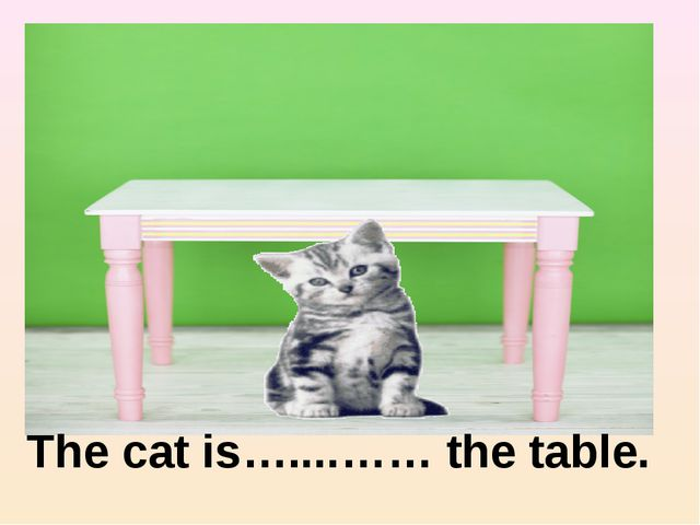 under The cat is…....…… the table. under