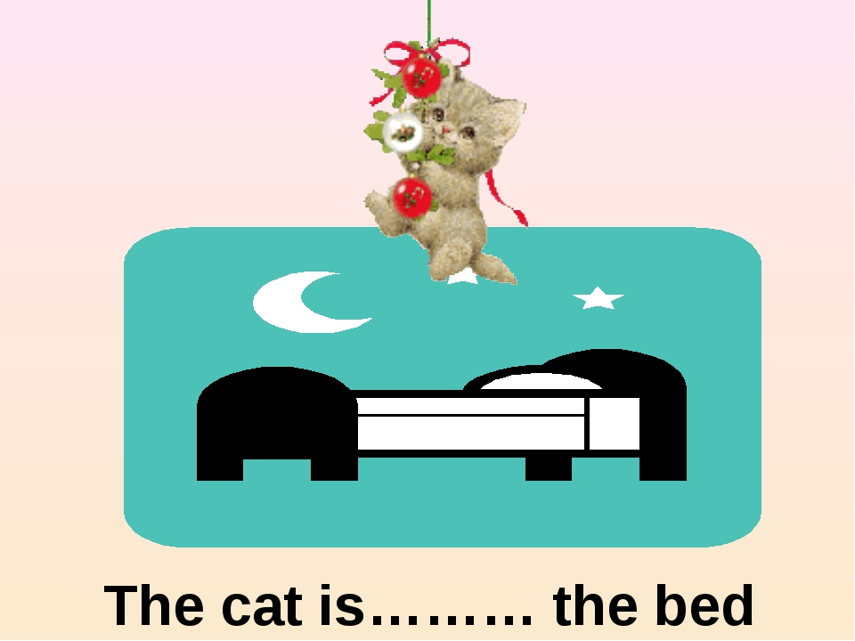 The cat is……… the bed above
