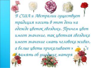 В США и Австралии существует традиция носить в этот день на одежде цветок гв