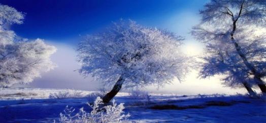 http://romantic-online.com/uploads/images/9/b/c/0/38/deaa7a6799.jpg