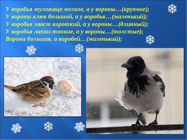 У воробья туловище мелкое, а у вороны…(крупное); У вороны клюв большой, а у в...