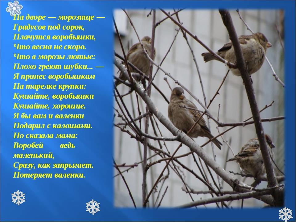 На дворе — морозище — Градусов под сорок, Плачутся воробышки, Что весна не ск...