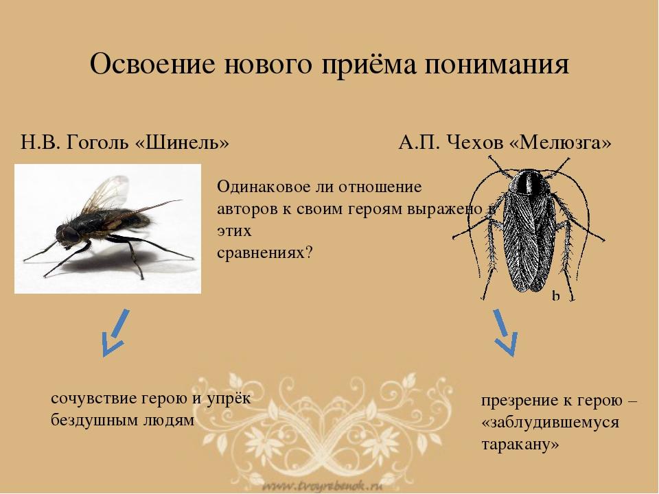 Освоение нового приёма понимания Н.В. Гоголь «Шинель» А.П. Чехов «Мелюзга» Од...