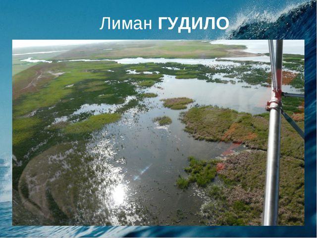 Лиман ГУДИЛО
