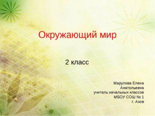 Окружающий мир 2 класс Марулова Елена Анатольевна учитель начальных классов М