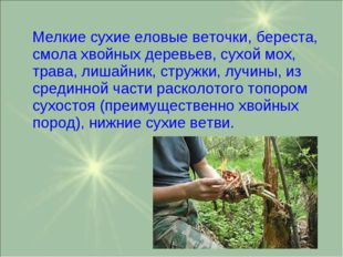 Мелкие сухие еловые веточки, береста, смола хвойных деревьев, сухой мох, тра