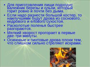 Для приготовления пищи подходит валежник березы и ольхи, который горит ровно