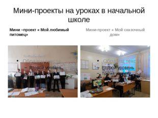 Мини-проекты на уроках в начальной школе Мини –проект « Мой любимый питомец»