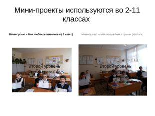 Мини-проекты используются во 2-11 классах Мини-проект « Мое любимое животное