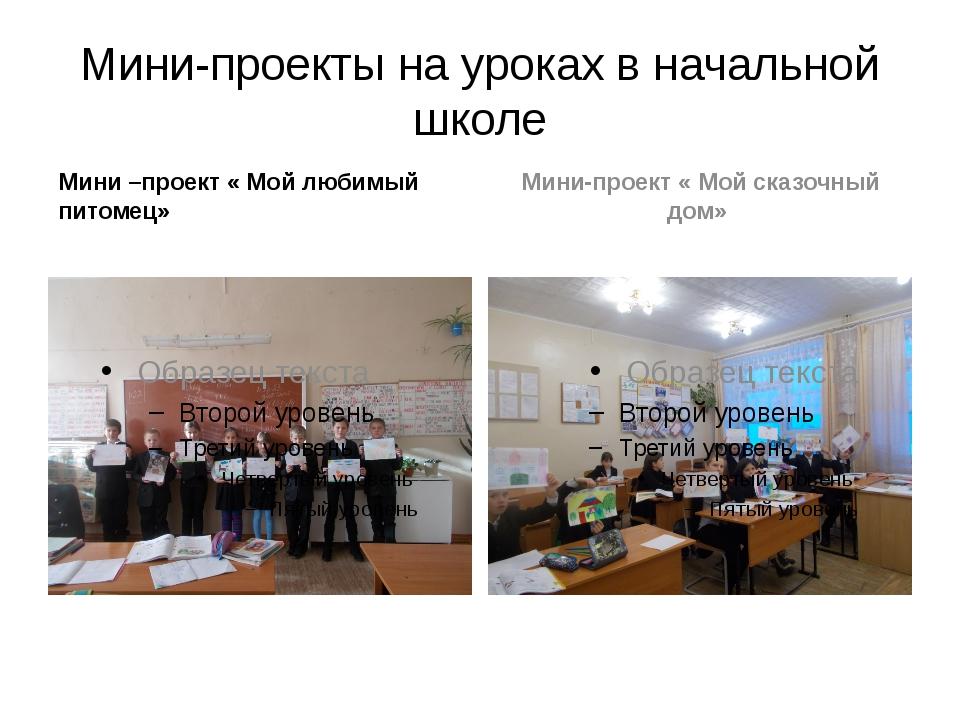 Мини-проекты на уроках в начальной школе Мини –проект « Мой любимый питомец»...