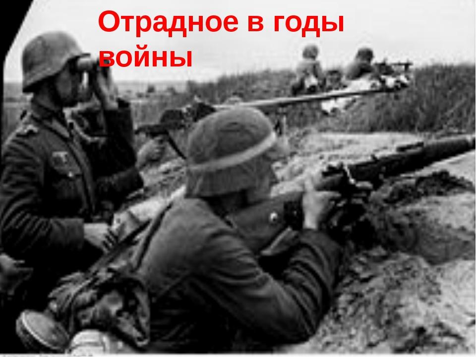 Отрадное в годы войны