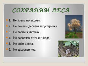 СОХРАНИМ ЛЕСА 1. Не ловим насекомых. 2. Не ломаем деревья и кустарники. 3. Не