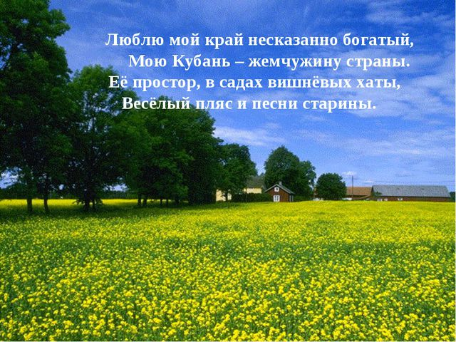 Люблю мой край несказанно богатый, Мою Кубань – жемчужину страны. Её простор,...