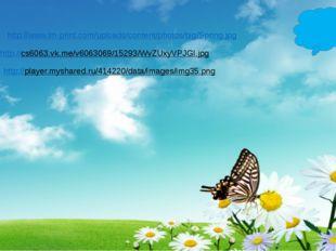 http://www.lm-print.com/uploads/content/photos/big/Spring.jpg http://cs6063.v