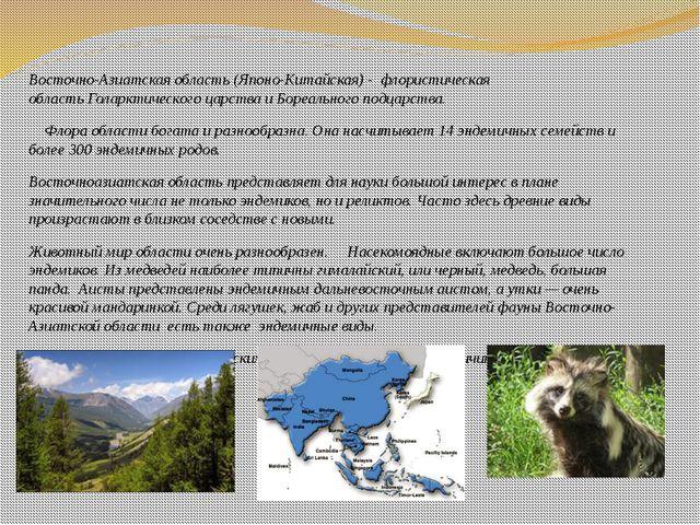 Восточно-Азиатская область(Японо-Китайская)- флористическая областьГоларк...
