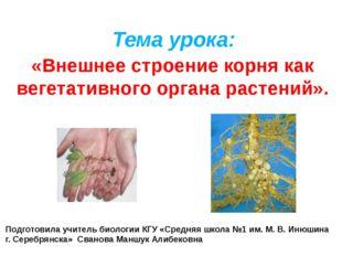 Тема урока: «Внешнее строение корня как вегетативного органа растений». Подго