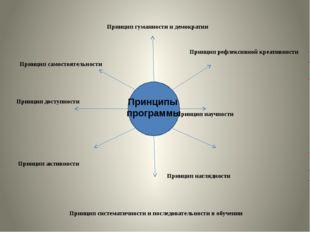 Принцип гуманности и демократии Принцип рефлексивной креативности Принцип са