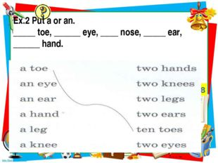Ex.2 Put a or an. _____ toe, ______ eye, ____ nose, _____ ear, ______ hand.
