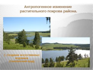 Антропогенное изменение растительного покрова района. 1. Создание искусственн