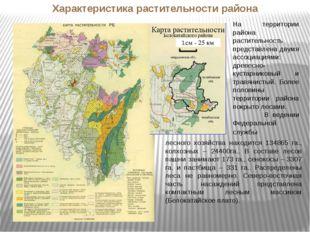 РБ На территории района растительность представлена двумя ассоциациями: древе