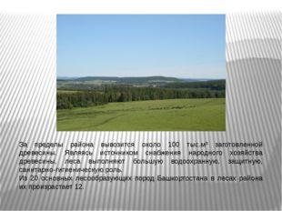 За пределы района вывозится около 100 тыс.м³ заготовленной древесины. Являясь