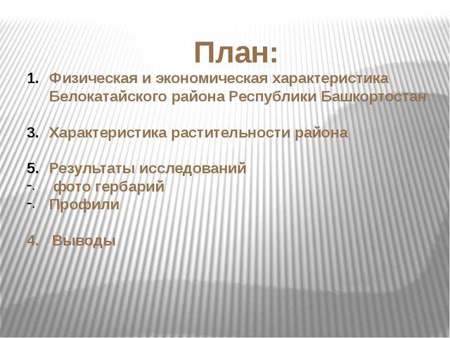 План: Физическая и экономическая характеристика Белокатайского района Республ...