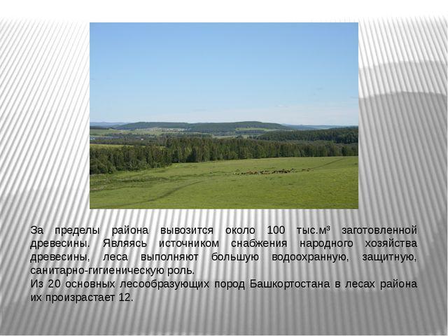 За пределы района вывозится около 100 тыс.м³ заготовленной древесины. Являясь...