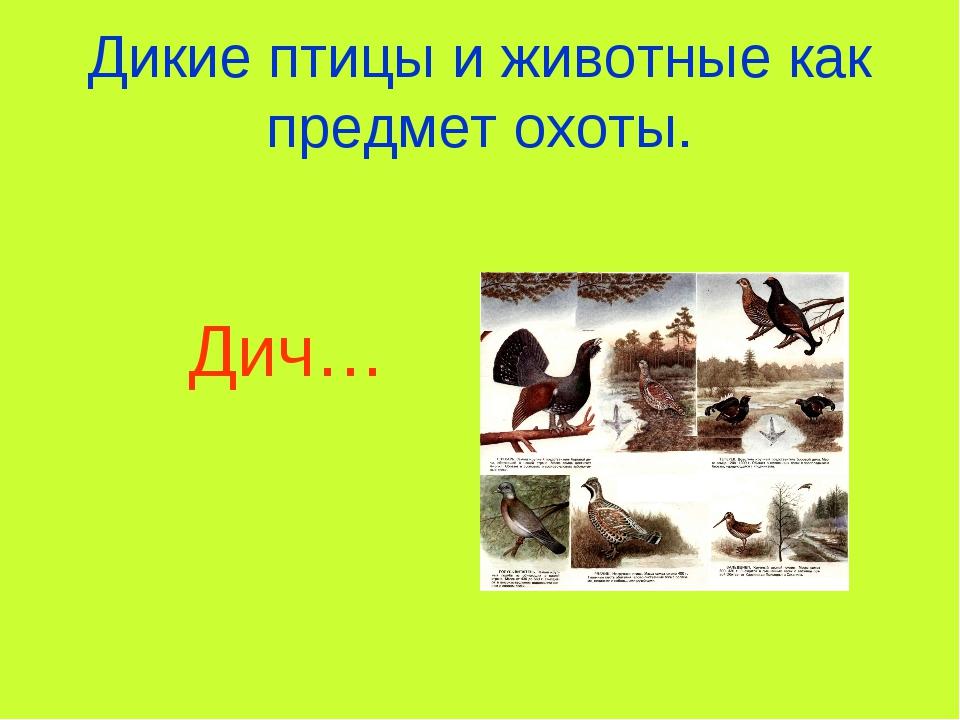 Дикие птицы и животные как предмет охоты. Дич…